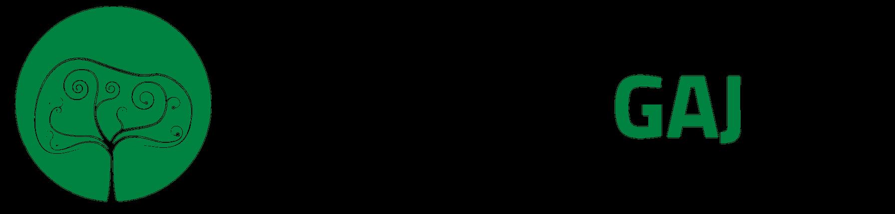 Wycinka Gaj